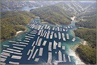 Aerial View of a Pearl Farm
