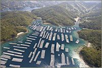 Aerial View of a Pearl Farm
